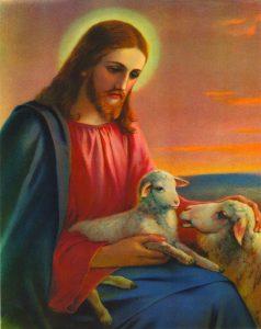 print shepherd